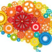 brain-color-1_fotor